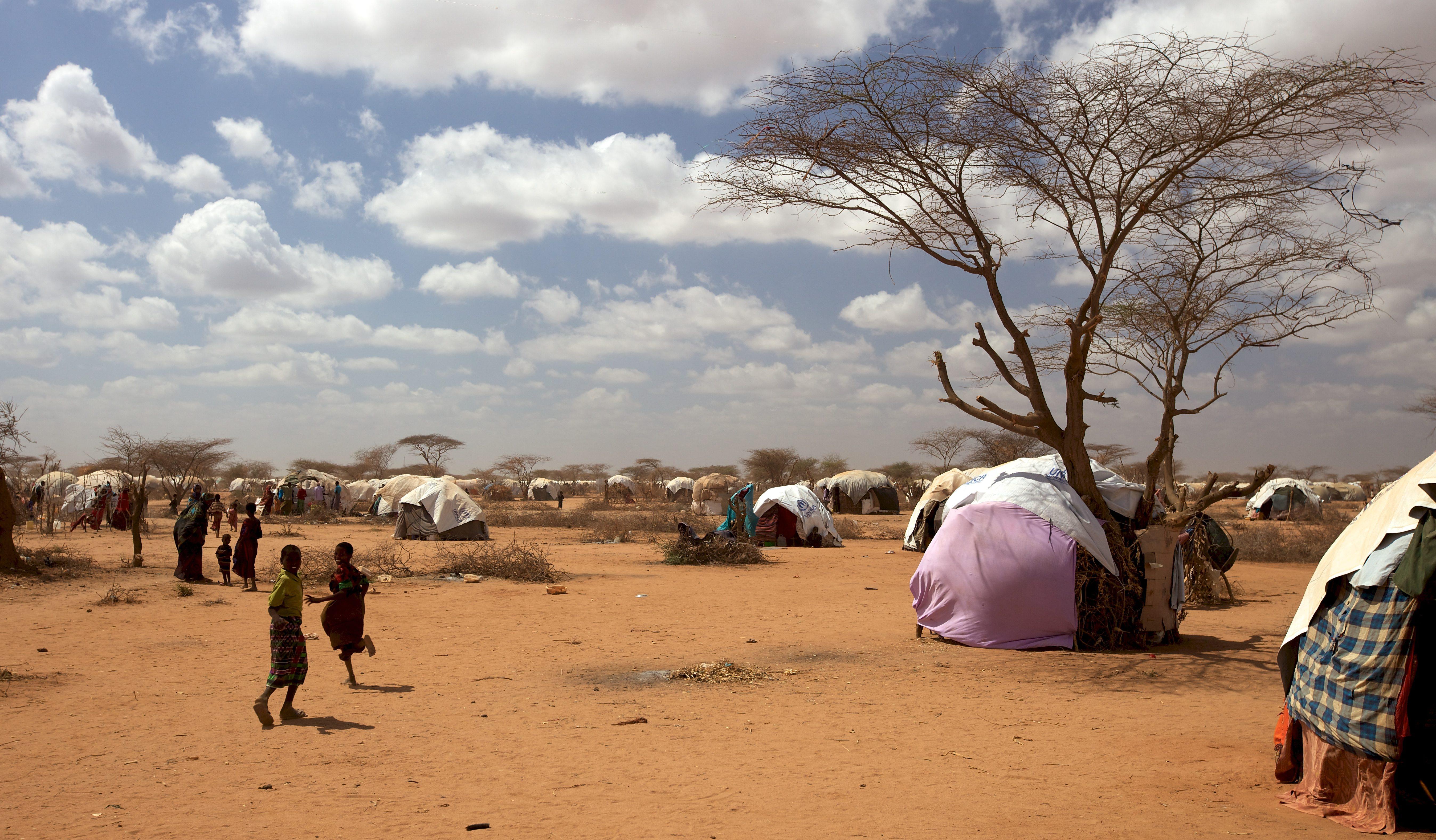 (c) UNHCR/ J. Brouwer/ August 2011